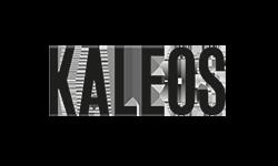 Kaleos Logo